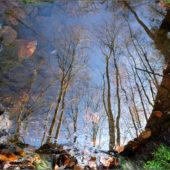 Krajina pod vodou